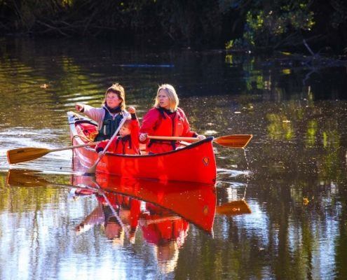 Tranquil canoe journey in Leitrim