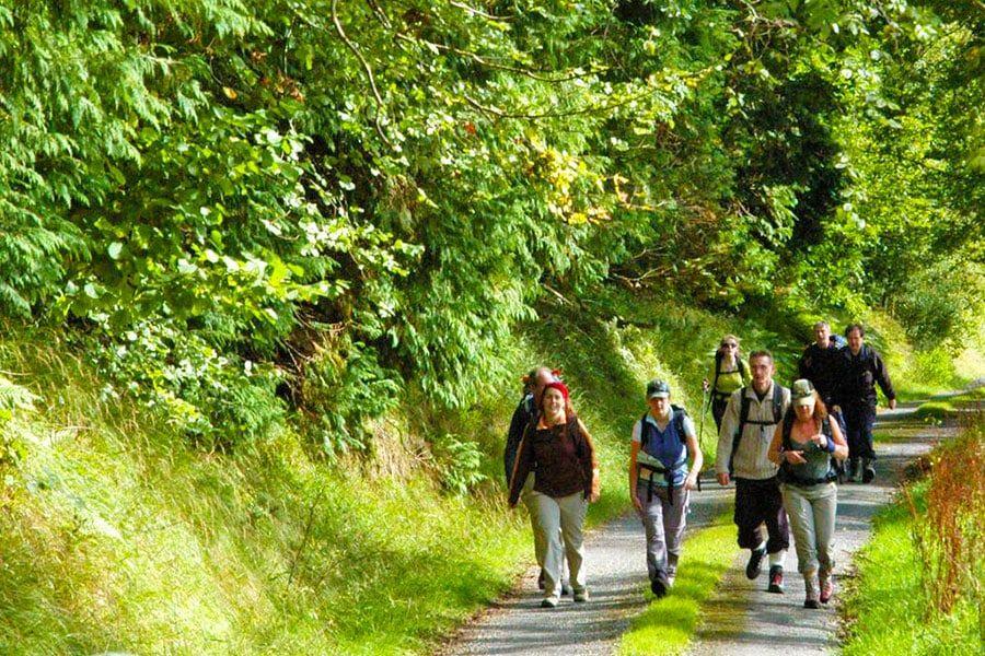 Walking in Leitrim